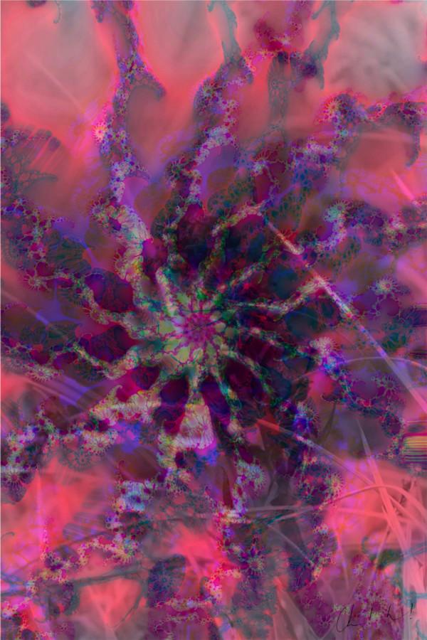 Fleur Digitale 4