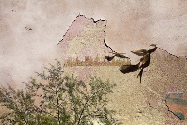 Lexina - Faire le mur