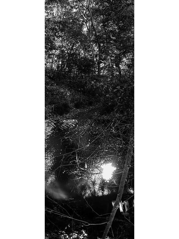 Reflecting landscape 03