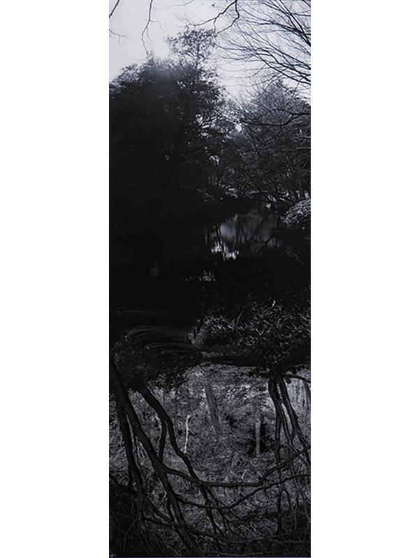 Reflecting landscape 05