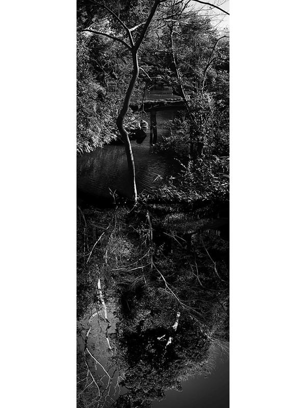 Reflecting landscape 07