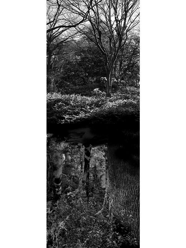 Reflecting landscape 08