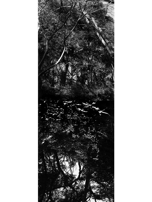 Reflecting landscape 10