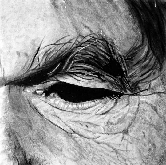 N°2 - polaroïd - œil âgé
