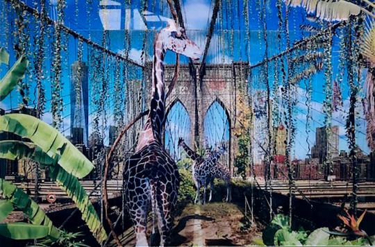 NEW YORK BROOKLYN BRIDGE LIANES