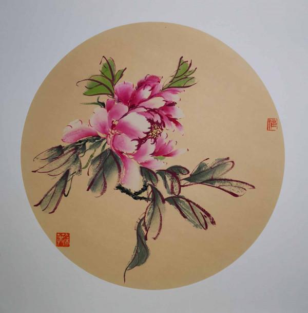 Pivoine rose 7