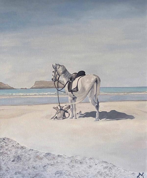 Un cheval à Essaouira