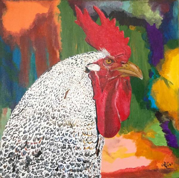 O gallo