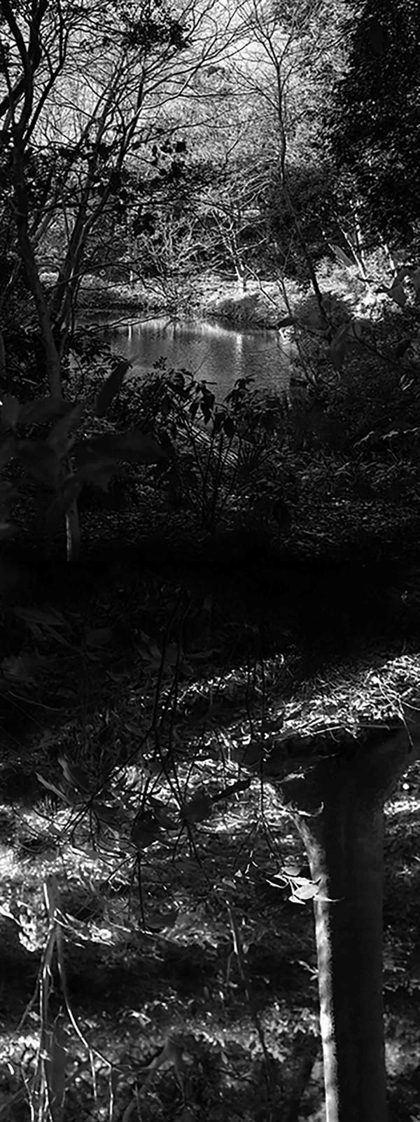 Reflecting landscape 04