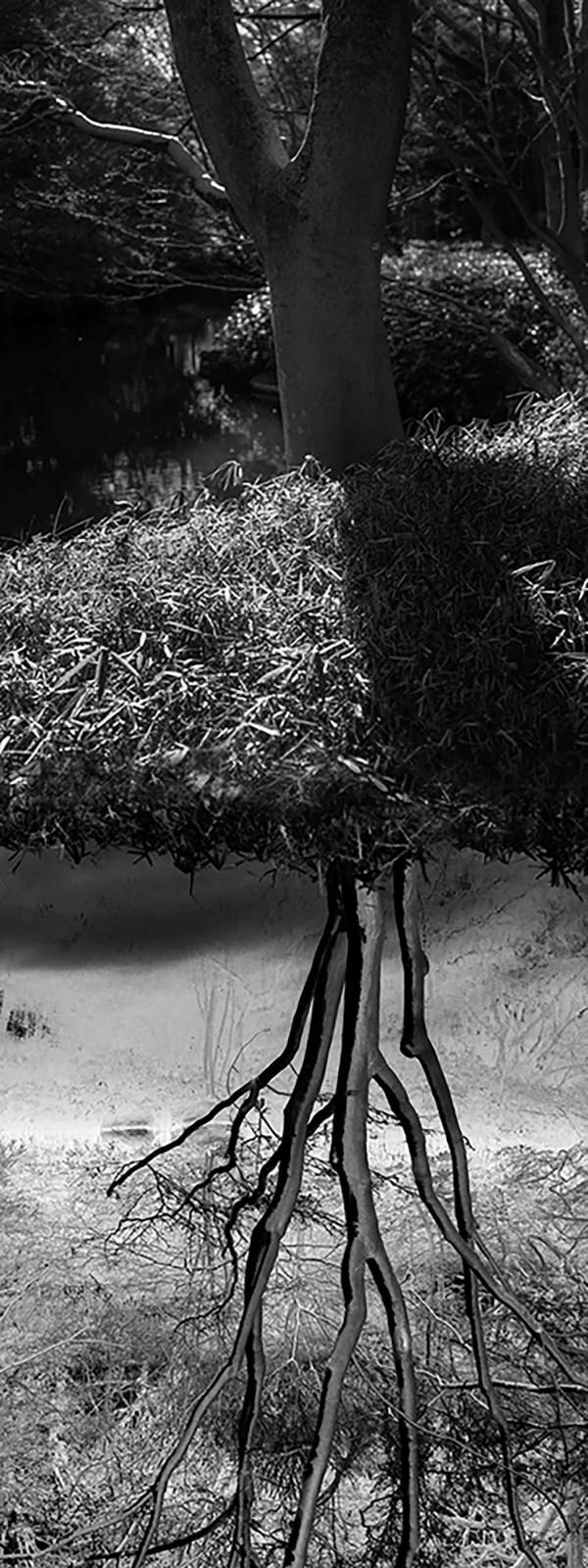 Reflecting landscape 06
