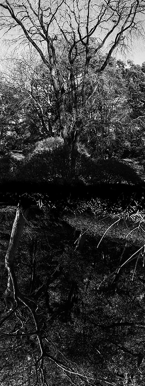 Reflecting landscape 09