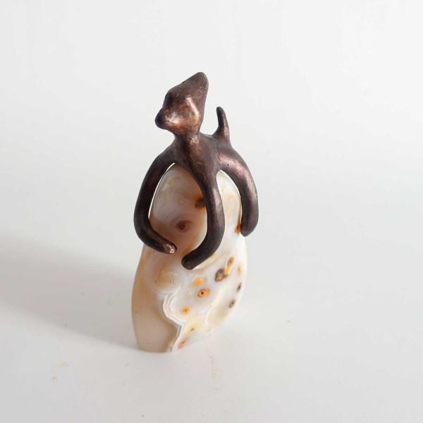 Chat-poulpe